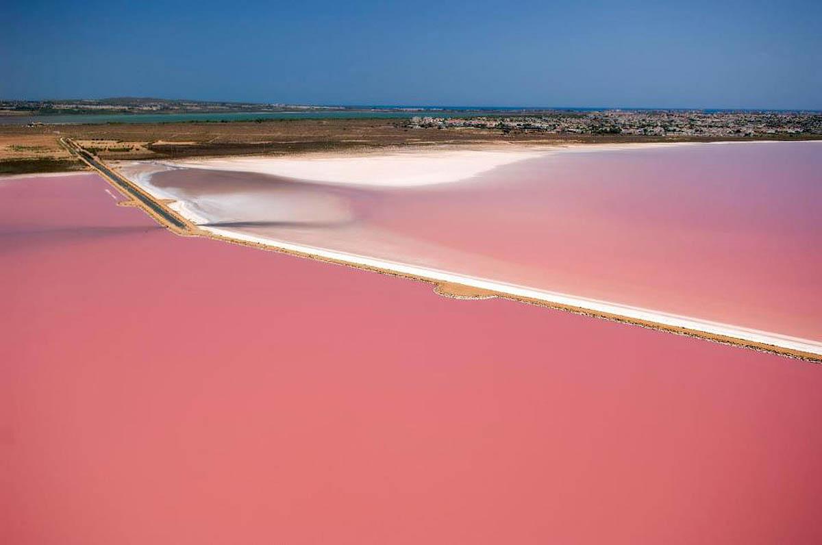 Розовое озеро в торревьеха недвижимость